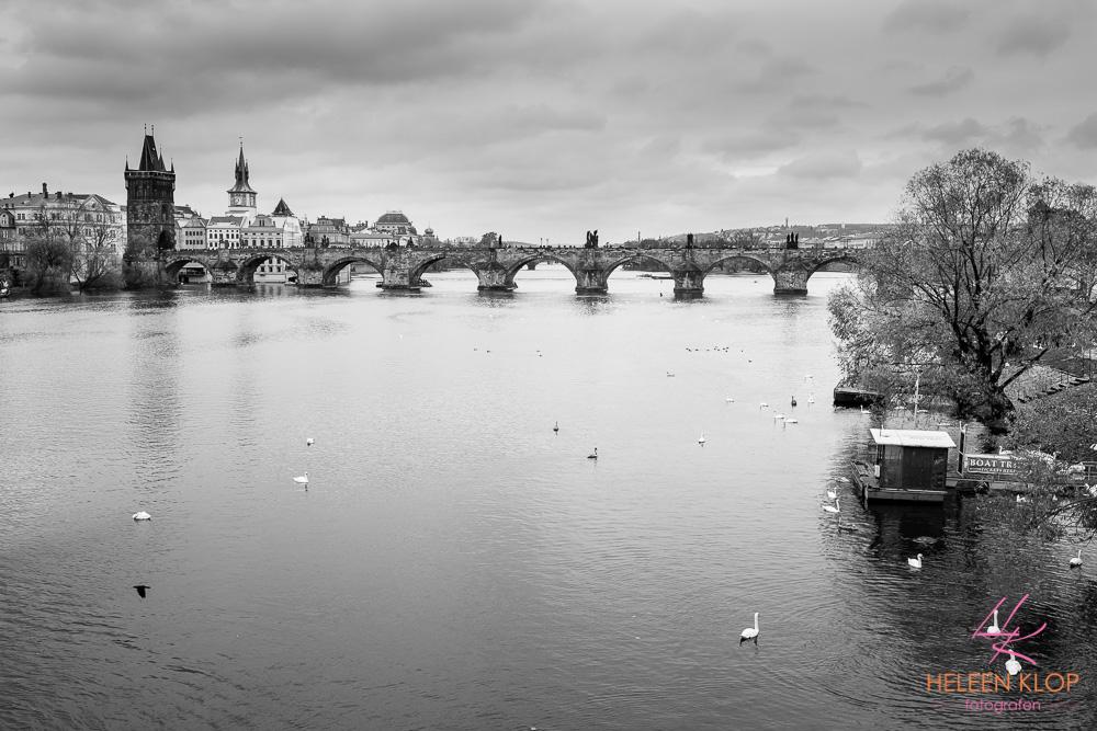 Rivier de Moldau Praag